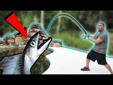 MONSTER LIVING IN MY POOL! (I CAUGHT IT)