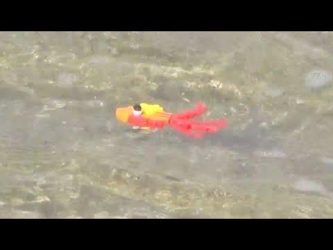 레고 블럭 물고기를 파도치는 바다에 집어 넣