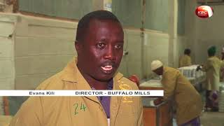 Farm Talk - Maize flour milling venture