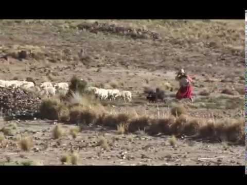 Matrimonio Aymara - Justicia Comunitaria Pt.1/4