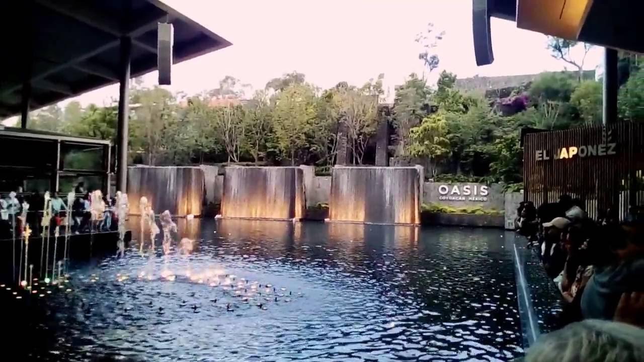 Resultado de imagen para oasis coyoacan