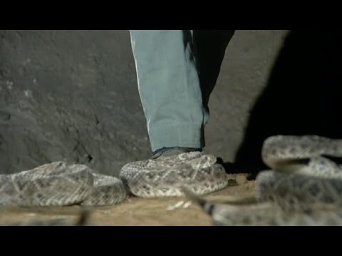 Kung Fu: Caine is at One with Rattlesnakes