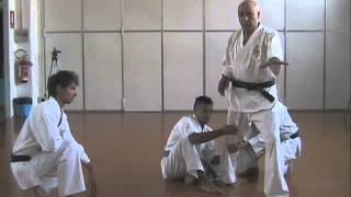Il potere segreto delle posizioni Zenkutsu Dachi e Kokutsu Dachi