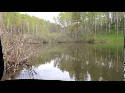 Русская рыбалка Cкачать симуляторы рыбной ловли