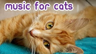 EXTENDED Cat Relaxation Music  Soft, Soothing Feline Lullabies!