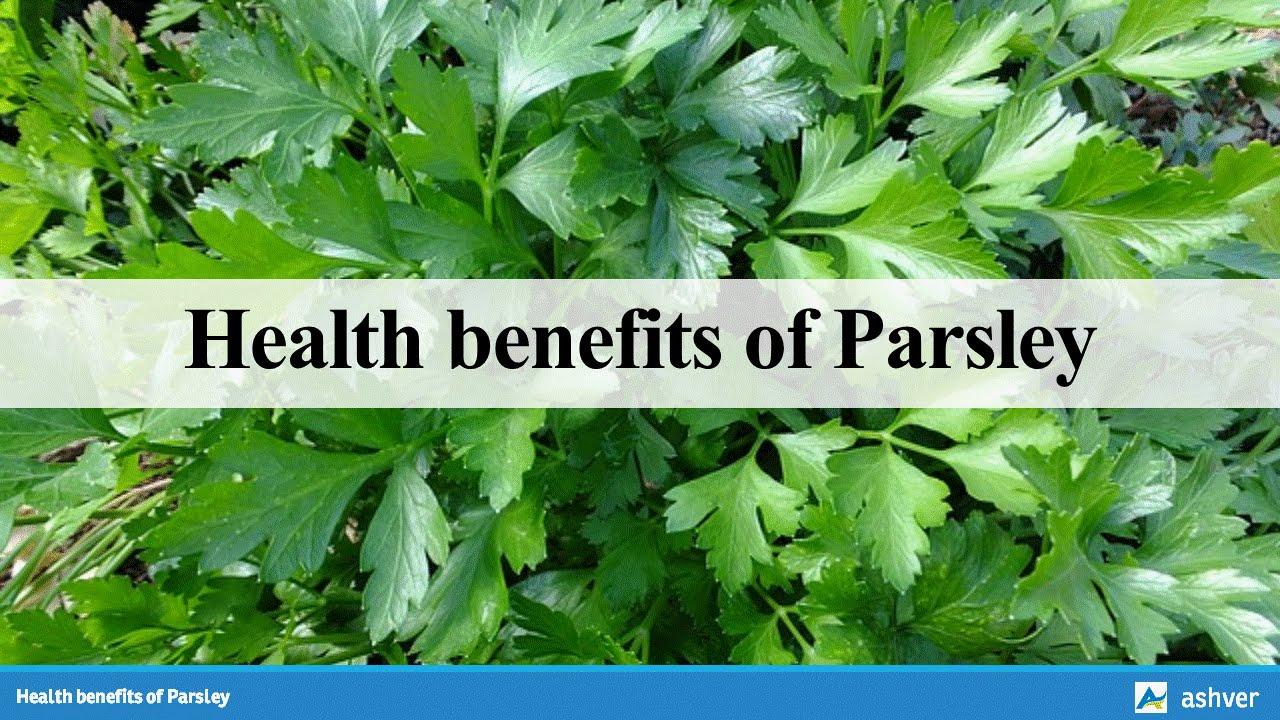 Health benefits of Parsley - YouTube