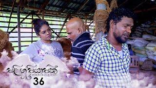 Palingu Piyapath | Episode 36 - (2020-03-01) | ITN Thumbnail