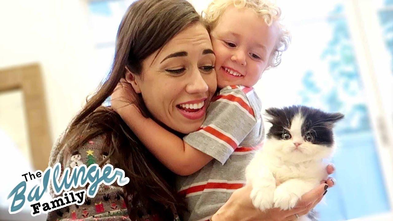 Colleen Ballinger Kitten