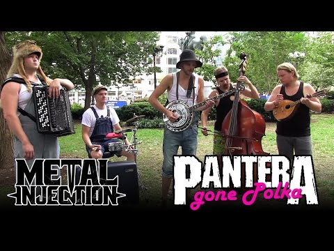 PANTERA Cemetery Gates Gone Polka  STEVE N SEAGULLS  Metal Injection