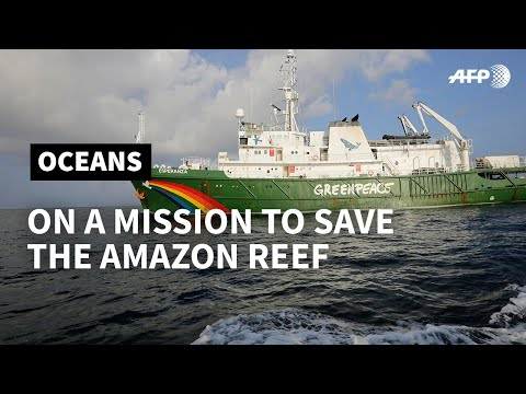 The Amazon Reef: unchartered territory already under threat | AFP
