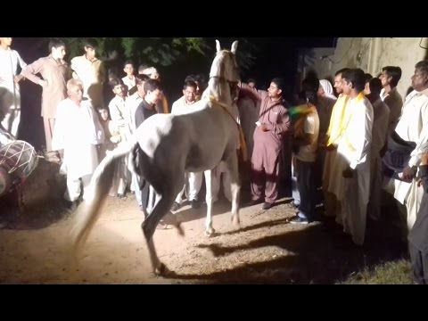 Gori ka dance on mahndi at night bhati...