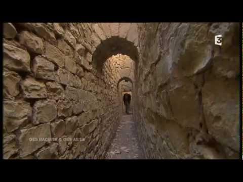 Vaucluse -  DES RACINES ET DES AILES  - avril 2014