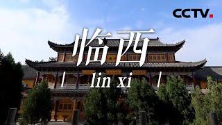 《中国影像方志》 第706集 河北临西篇| CCTV科教 - YouTube