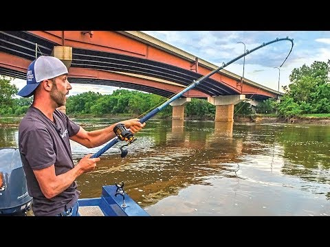 Fishing Bridges for FLATHEAD CATFISH