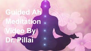 [4.23 MB] Dr. Pillai: Guided AH Meditation Video