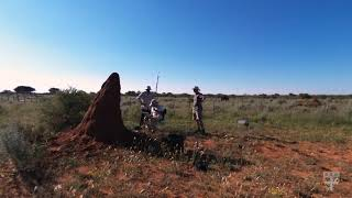 Termite mounds in Namibia inspire energy-efficient buildings thumbnail