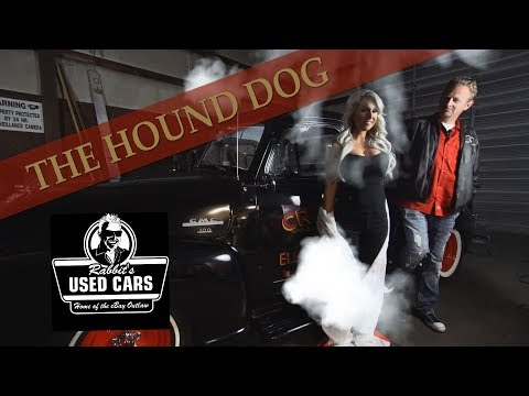 Elvis & Rabbit - The Hound Dog - Rabbit's Used Cars