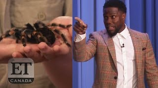 Kevin Hart Scared Of Exotic Animals