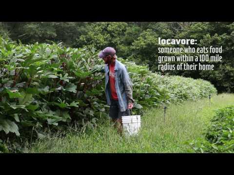 Local Food Economics - Georgia Organics