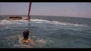 Jaws 2 - Brody and Eddie