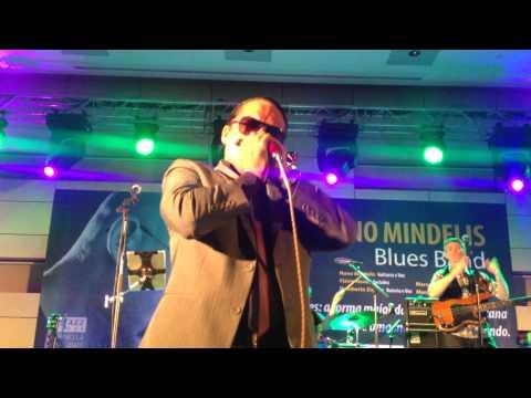 Nuno Mindelis Blues Band @ Africa  Tour - Marcelo Naves' Boogie