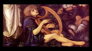 Scarborough Fair - Celtic Harp