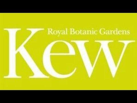 Kew Garden London