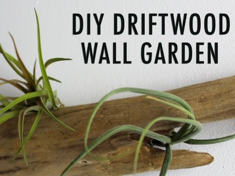 DIY Driftwood Wall Garden - YouTube