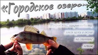 С ультралайтом в черте города, ловля окуня и щуки - ''Городское озеро''