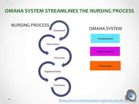 Nursing Informatics Case Study - using the Omaha System as a Structured Tool for Nursing ...