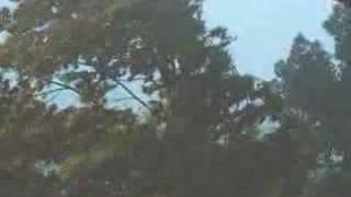 Thunderstorm rips through Otoe County