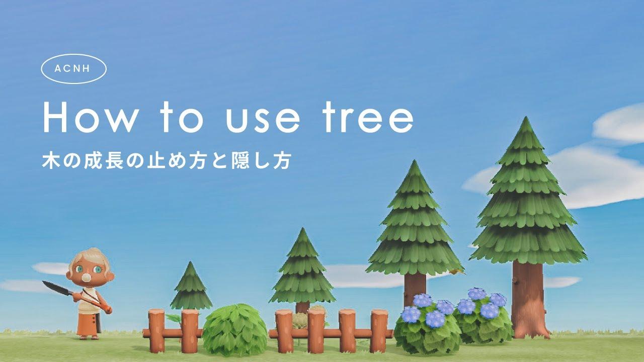 森 止める あつ 木 成長