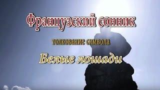 видео Сонник белая лошадь к чему снится  белая лошадь во сне