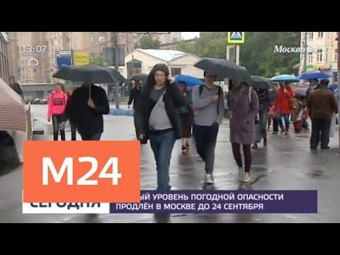 Заморозки и первый снег ожидаются в Москве в ближайшую неделю - Москва 24