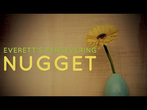 Persevering Nugget (Struggles)
