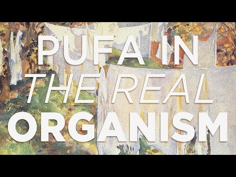 Polyunsaturated Fats in The Real Organism [Generative Energy #7]