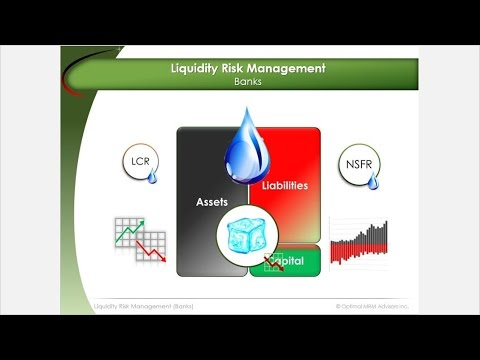 Liquidity Risk Management | Basel 3