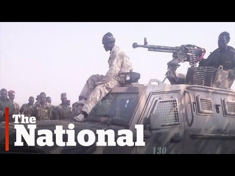 Armoured car sale to South Sudan should be investigated, rights groups say