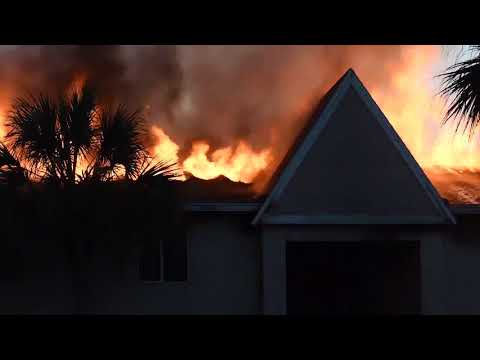 Tampa apartment complex goes up in flames