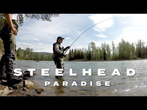 Steelhead Paradise - 38