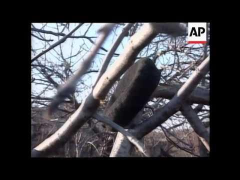 KOSOVO: SERBS SHELL VILLAGE OF PANTINO