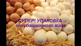 видео Упаковка под яйца