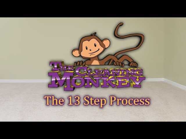 The Cleaning Monkey - The 13 Step Process Preview
