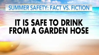 Fact vs. fiction: Summer health hazards