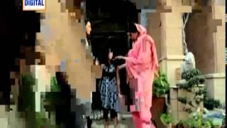 Zara Aur Mehrunnisa , Episode 20 Full ON Ary Digital , 25 March 2014