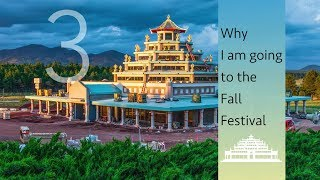 Why I am going to the Fall Festival 3