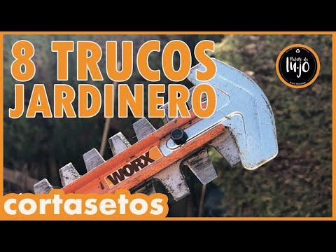 CORTAR SETOS. LOS MEJORES 8 TRUCOS DE JARDINERO con Cortasetos WORX 40v a batería CURSO JARDINERIA