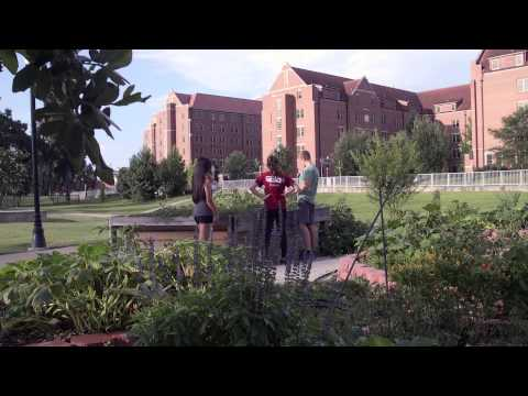 FSU's own on-campus garden, the Seminole Organic Garden