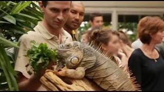 Animal Expo : le salon animalier de la démesure - Reportage