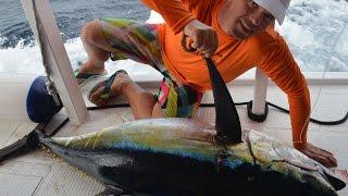 Мальдивы Джиггинг 90 кг тунец(Мальдивы довля на Джиггинг - 90 кг тунец Эффективная рыбалка на Мальдивах на джиггинг shimano stella, shimano stella 18000,..., 2016-12-29T17:16:57.000Z)
